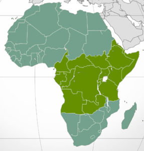 Central & Eastern Africa